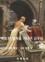 도서 이미지 - 백마 탄 왕자를 기다린 공주들