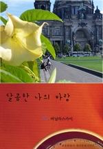 도서 이미지 - 달콤한 나의 바람