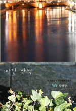 도서 이미지 - 야간 산책
