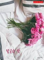 도서 이미지 - 달콤한 잠