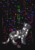 도서 이미지 - 투명 고양이