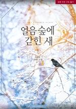도서 이미지 - 얼음 숲에 갇힌 새