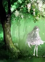 도서 이미지 - 아카시아 숲의 소녀