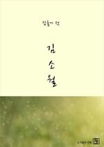 도서 이미지 - 잠들기 전 김소월
