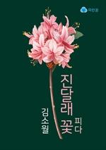 도서 이미지 - 진달래꽃 피다
