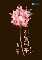 도서 이미지 - 진달래꽃 지다