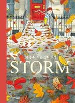 도서 이미지 - STORM 폭풍우 치는 날의 기적