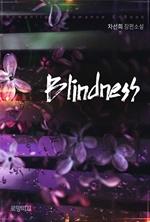 도서 이미지 - 블라인드니스 (blindness)