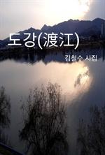 도서 이미지 - 도강(渡江)