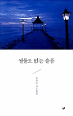 도서 이미지 - 썰물도 없는 슬픔