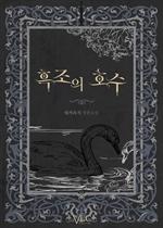도서 이미지 - 흑조의 호수