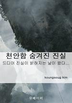 도서 이미지 - 천안함 숨겨진 진실
