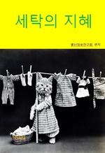 도서 이미지 - 세탁의 지혜