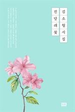 도서 이미지 - 김소월 시집 진달래꽃