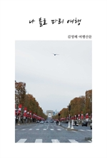 도서 이미지 - 나 홀로 파리여행
