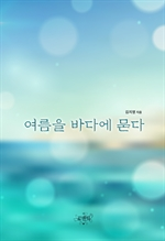도서 이미지 - 여름을 바다에 묻다