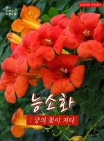 도서 이미지 - 능소화 : 궁의 꽃이 지다