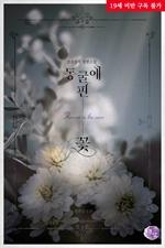 도서 이미지 - 동굴에 핀 꽃 (외전증보판)