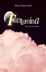 도서 이미지 - 판토미나 혹은 미로 속의 사랑 (Fantomina OR Love in a Maze)