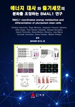 도서 이미지 - 에너지 대사 와 줄기세포의 분화를 조정하는 BMAL1 연구