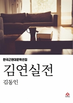 도서 이미지 - 김연실전