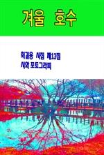 도서 이미지 - 겨울 호수