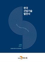 도서 이미지 - 한국산업기술발전사: 소재