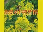 도서 이미지 - 곤충산업의 육성 및 지원에 관한 법령집