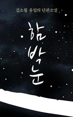 도서 이미지 - 김소월 유일의 단편소설 : 함박눈