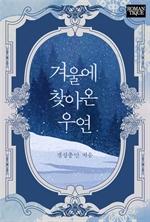 도서 이미지 - 겨울에 찾아온 우연