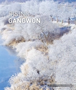 도서 이미지 - RISING GANGWON Volum 81