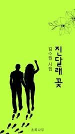 도서 이미지 - 진달래꽃 시집