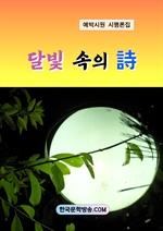 도서 이미지 - 달빛 속의 시