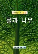 도서 이미지 - 풀과 나무