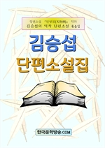 도서 이미지 - 김승섭 단편소설집