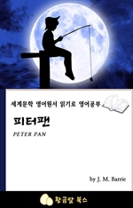 도서 이미지 - 피터팬