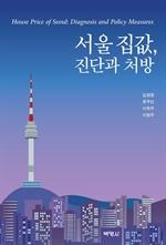 도서 이미지 - 서울 집값, 진단과 처방