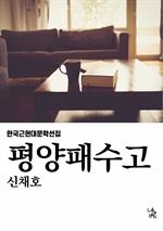도서 이미지 - 평양패수고