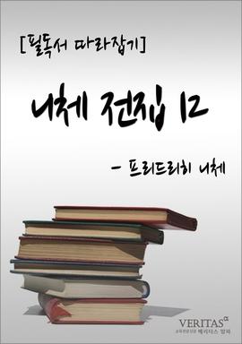도서 이미지 - 니체전집 12 (프리드리히 니체)