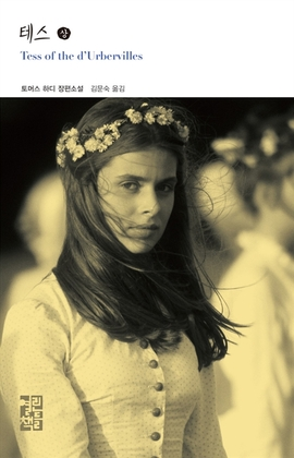 도서 이미지 - 테스 (상)