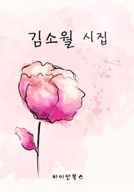 도서 이미지 - 김소월 시집
