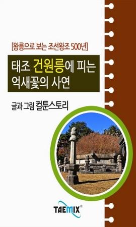 도서 이미지 - [오디오북] 왕릉으로 보는 조선왕조 500년 : 태조 건원릉에 피는 억새꽃의 사연
