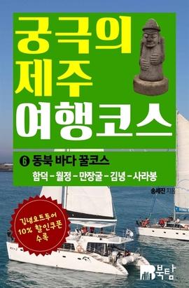 도서 이미지 - 궁극의 제주 여행 코스 6 : 동북 바다 꿀코스