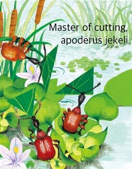 도서 이미지 - 오리기 선수 거위벌레 - Master of cutting, apoderus jekeli