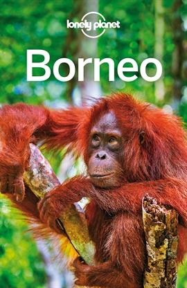 도서 이미지 - Lonely Planet Borneo