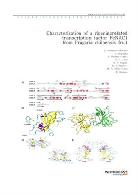 도서 이미지 - Characterization of a ripening-related transcription factor FcNAC1 from Fragaria chiloensi