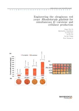 도서 이미지 - Engineering the oleaginous red yeast Rhodotorula glutinis for simultaneous β-carotene and