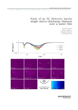 도서 이미지 - Study of an AC dielectric barrier single micro-discharge filament over a water film