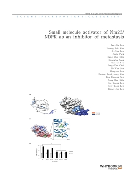 도서 이미지 - Small molecule activator of Nm23NDPK as an inhibitor of metastasis