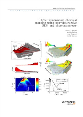 도서 이미지 - Three-dimensional chemical mapping using non-destructive SEM and photogrammetry